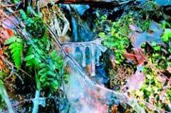 Анонс: От дождей и морозов