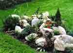 Анонс: Сад и пруд