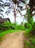 Анонс: Хорошо снять домик в деревне