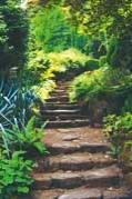 Анонс: Пешком по саду