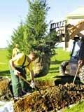 Анонс: Построил дом - посади дерево!