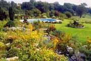 Анонс: Осенние заботы беззаботного садовладельца