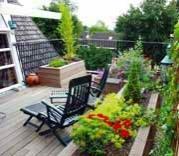 Анонс: Сад на крыше