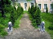 Анонс: Растения навынос