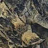 >> Декоративное покрытие Valencia (золото) 0,9 кг