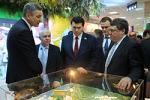 Группа «СВЕЗА» представила проект самого экологичного целлюлозного завода в мире