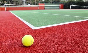 КРАСКА «РЕЗИНОВАЯ», для теннисных кортов, полов, бассейнов, крыш, по оцинковке