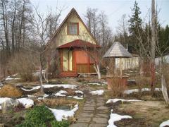 Анонс: Уход за деревянным домом весной: средства защиты Neomid