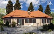 Проект одноэтажный дом с камином и террасой