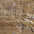 Фото 3: Каменный шпон Zikam Stone - песчаник