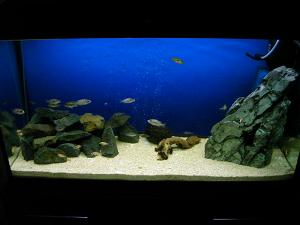 Кварцевый песок для аквариумов