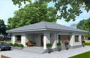 Проект просторный одноэтажный дом