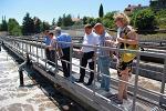 BASF сделал вклад в экологию Большого Сочи