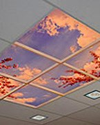Programmable SkyCeiling