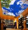 Новые программируемые потолки Programmable SkyCeiling