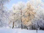 Зима будет холодной, а расходы на топливо – существенными