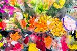 Автоматика позаботится о цветочной торговле