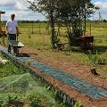 Фото 2: Сборка садовой дорожки на даче, быстро и своими руками!