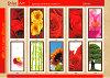>> Декоративные панели из стекла, оргстекла, МДФ, серия `Цветы`