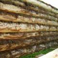 Фото 3: Деревянные дома