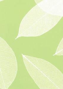 Декоративное стекло Гласспан Glasspan DG 010 Лист Светло-зеленый