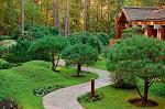 С 2015 года граждане России смогут бесплатно получить в собственность садовые участки